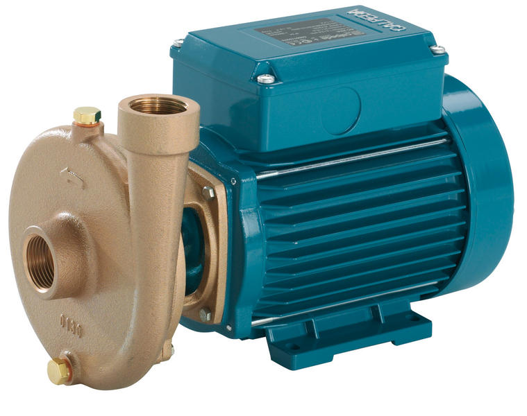 C - Single and twin impeller centrifugal pumps - Industrial pumps for  numerous applications - Calpeda